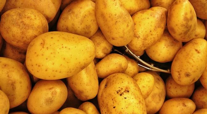 Ein ganzes Museum rund um die Kartoffel