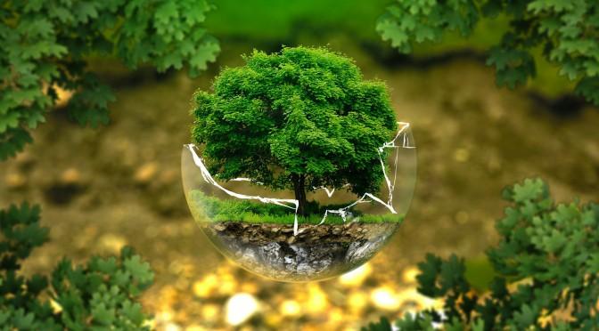 Grünes Reisen – ökologischer Urlaub im Einklang mit der Natur