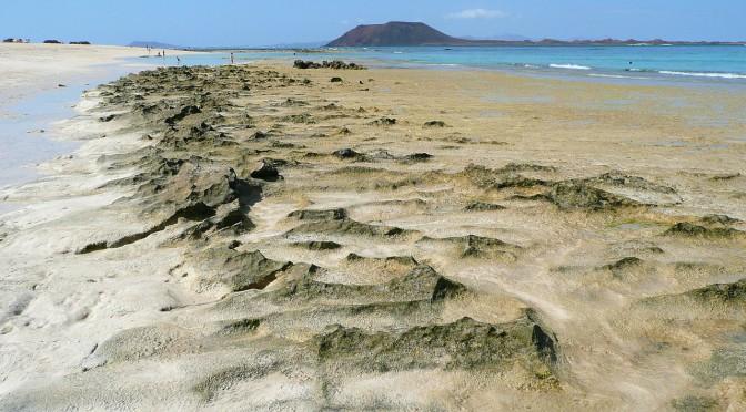 Eine wunderschöne Insel voll idyllischer Natur – Fuerteventura