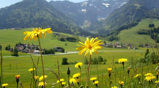 tirol-berglandschaft