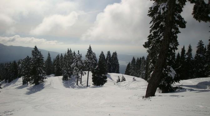 Nove Mesto na Morave – ein bedeutendes Mekka für alle Biathlon-Fans