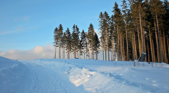 Skiurlaub im Harz – Ferien im höchsten Gebirge des Nordens