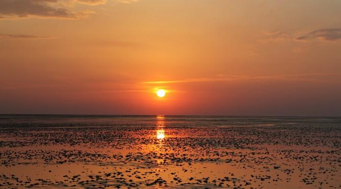 Mildes Reizklima und eine interessante Landschaft – was die Nordsee auszeichnet